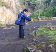 Our trekking guide